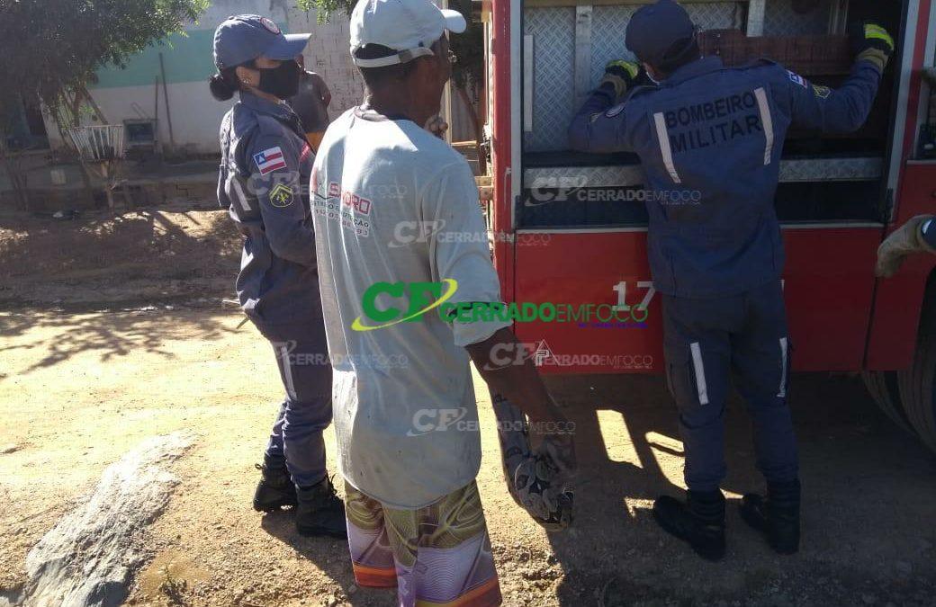 Barreiras: Jibóia aparece em residência e é resgatada por bombeiros do 17º GBM