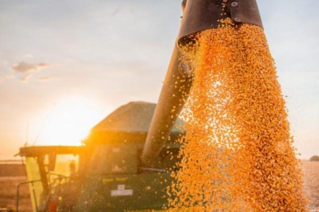 Safra de grãos na Bahia pode superar 10 milhões de toneladas em 2021.
